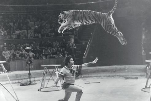 Михаил Багдасаров во время представления