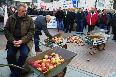 Сотни рольских фермеров прошли маршем по Варшаве в знак протеста против запрета России на ввоз польских овощей и фруктов. 2014 г.
